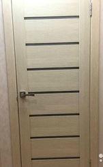 Дверное полотно 2331